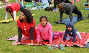 High housing cost, limited child care and a public school system with a mixed reputation have reduced births and birth rates in San Francisco. That has changed in the last five years. In June 2015, at International Yoga Day at Marina Green Park. (Photo by Jesus Nava Jr.)